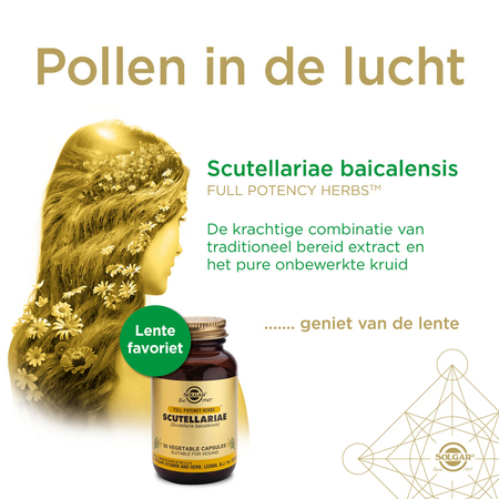 csm-solgar-scutellariae-webbeeld-651x651px-nl-98e86c2c21.jpg
