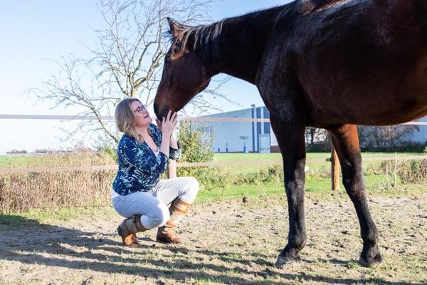 horizon-paardencoaching-leven-het-nu.jpeg