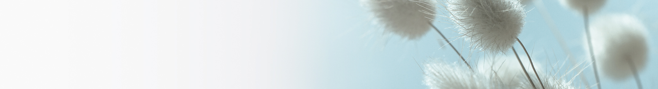header-huidkliniekellis-pagedetail.jpg