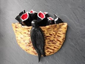 zwaluw-nest.jpg