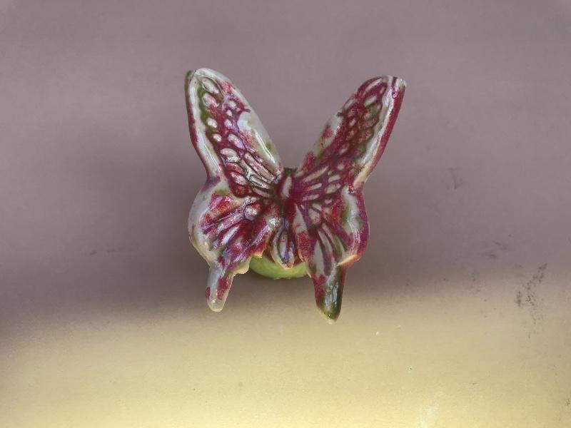 vlinder-bestemming.jpg