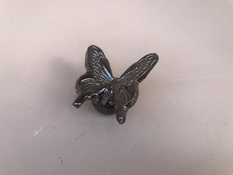 vlinder-bestemming-7.jpg